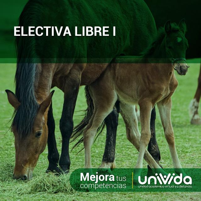 ELECTIVA-LIBRE-I-(equinos)
