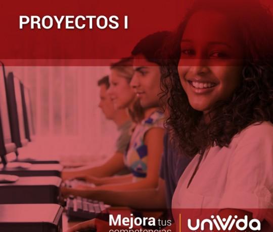 proyectos-I